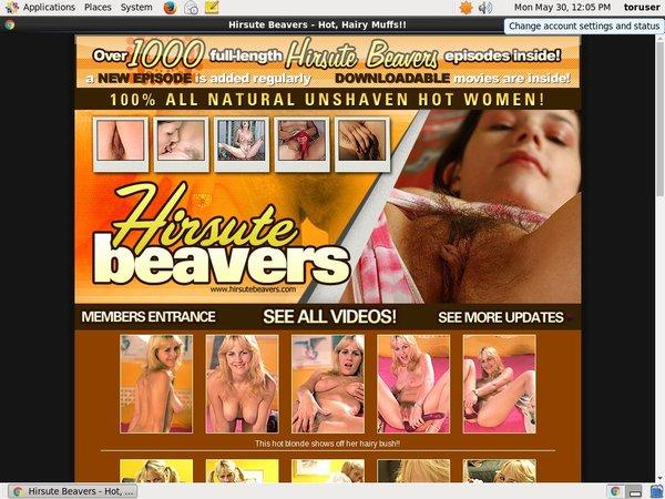 Accounts Free Hirsutebeavers.com