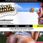 Brown Bunnies Accounts Daily