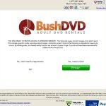 Bush DVD Free Acc