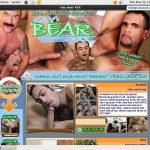 Get Gay Bear Xxx Account
