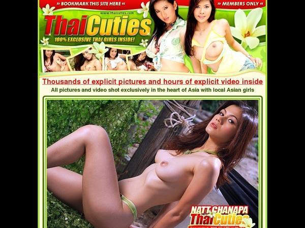 Login Thaicuties.com
