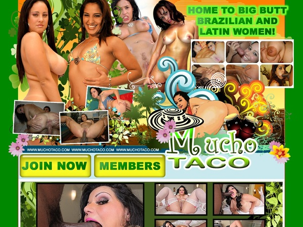 Muchotaco Renew