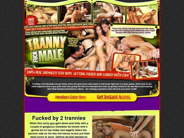 Trannyfuckmale.com Babes