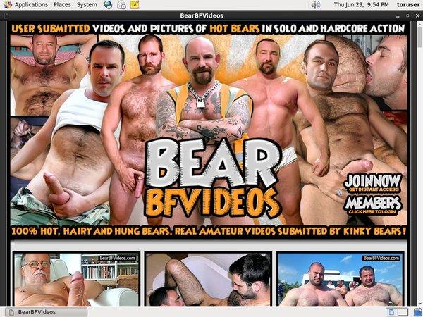 Bear BF Videos Torrent