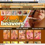 Hirsute Beavers Free Pass