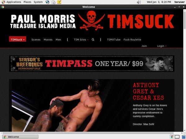 Free User For Timsuck.com