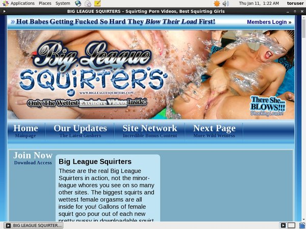 Mobile Bigleaguesquirters Account