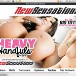 Heavy Handfuls Torrent