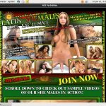 Latin-shemales.net Videos For Free