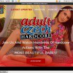 Adultczechhardcore Accs