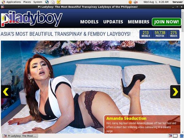 Piladyboy Account New
