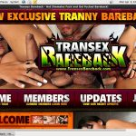 Transex Bareback With IDeal