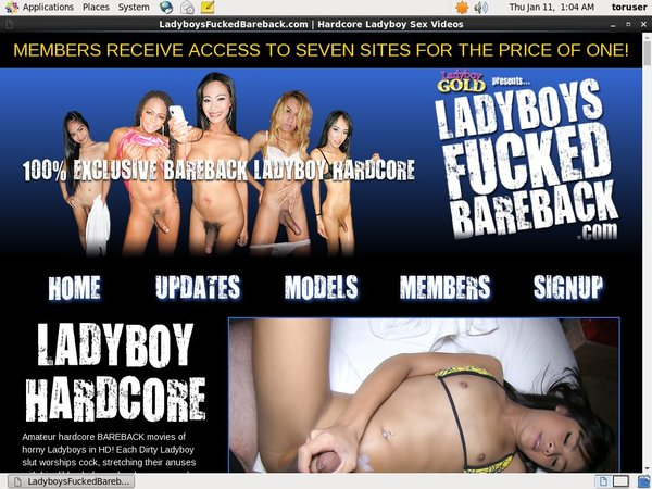 Ladyboys Fucked Bareback Account And Passwords