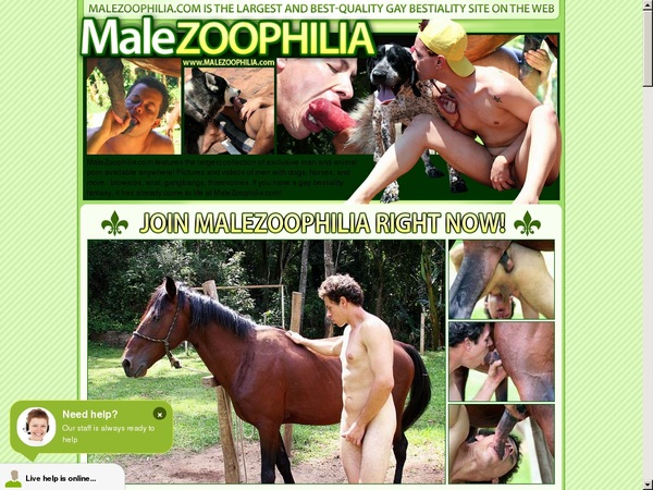 Malezoophilia Free Accounts And Passwords