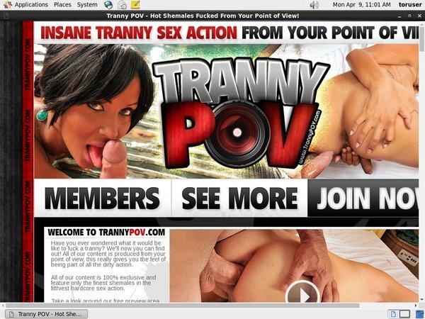 Trannypov.com Porn Accounts